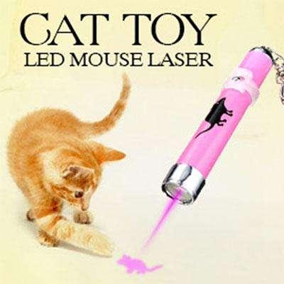 кошачий-лазер