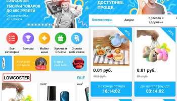 Лоукостер от Алиэкспресс — бюджетные товары до 600 рублей